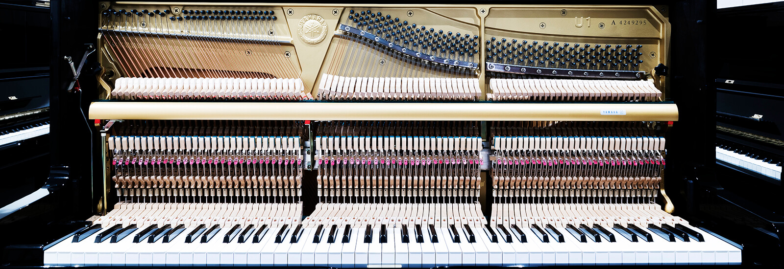 We have the perfect piano for your needs and budget