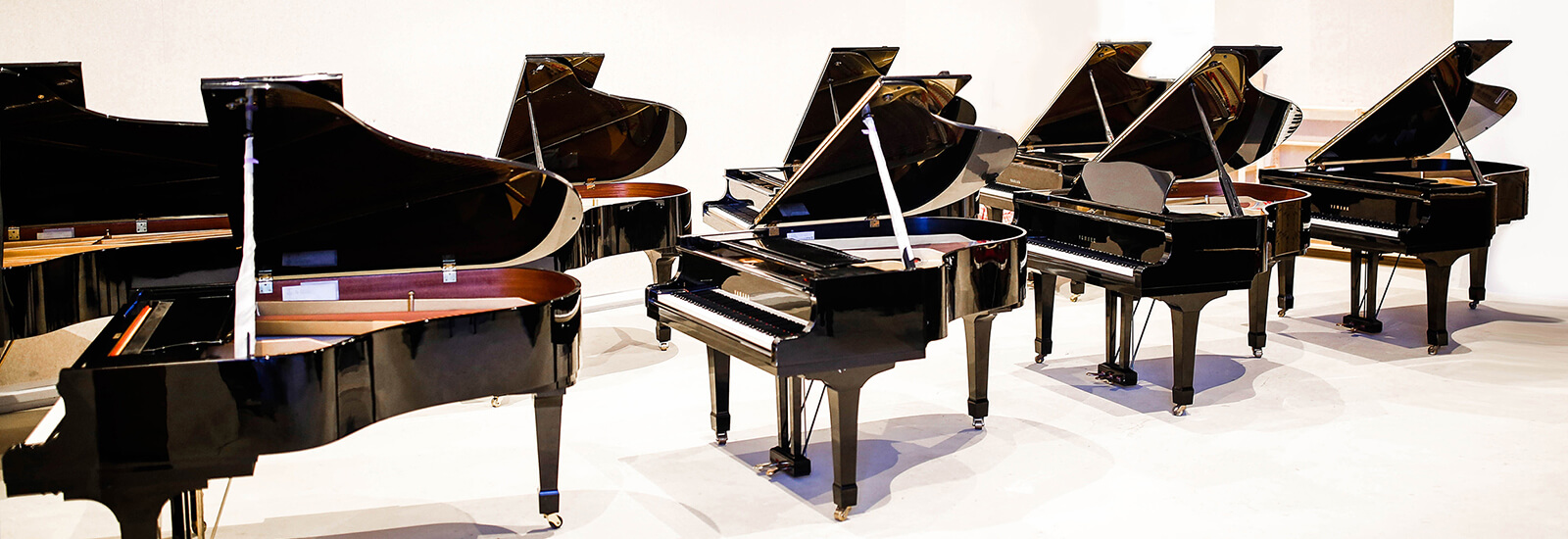 Let your musical dreams take flight with the piano